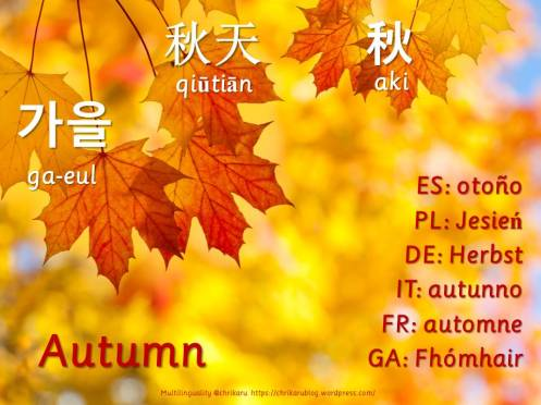 multilingual flashcards autumn