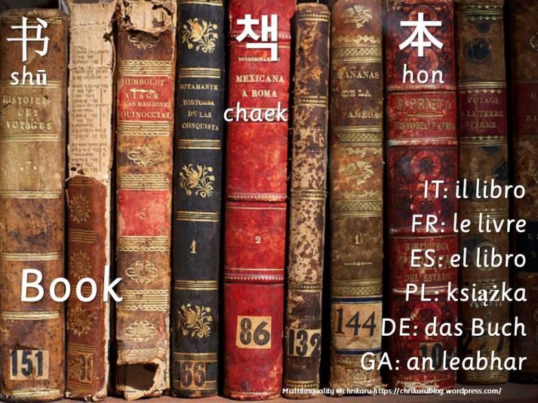 multilingual flashcards book