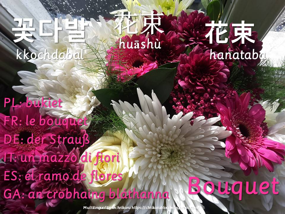 multilingual flashcards bouquet