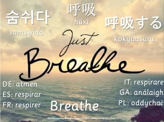 multilingual flashcards breathe
