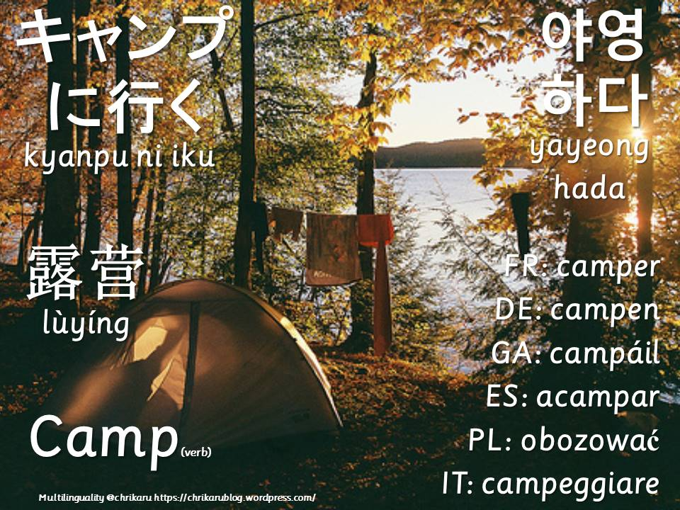 multilingual flashcards camp