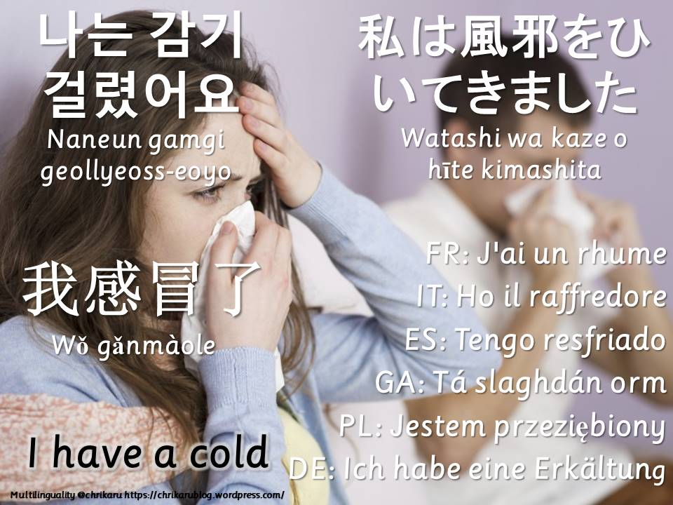 multilingual flashcards catchcold