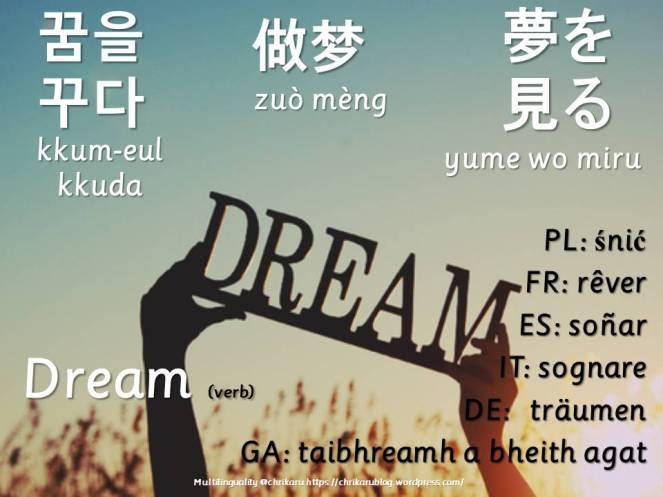 multilingual flashcards dream