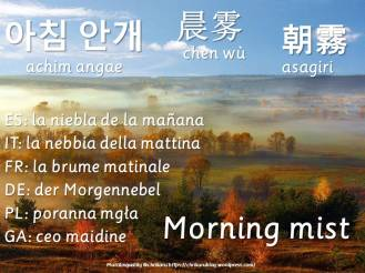 multilingual flashcards morningmist