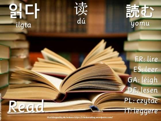multilingual flashcards read