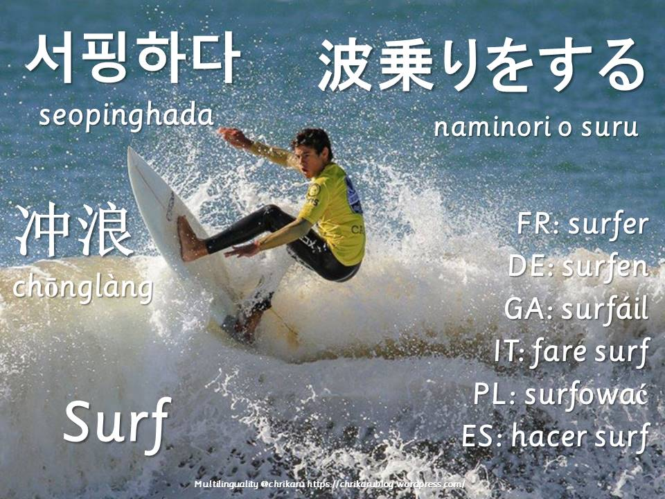 multilingual flashcards surf