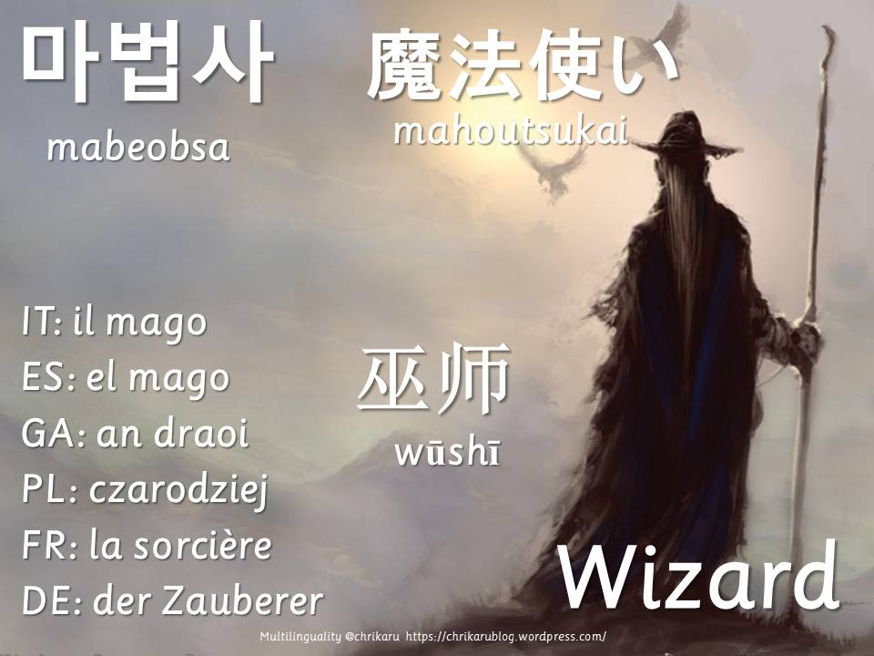multilingual flashcards wizard