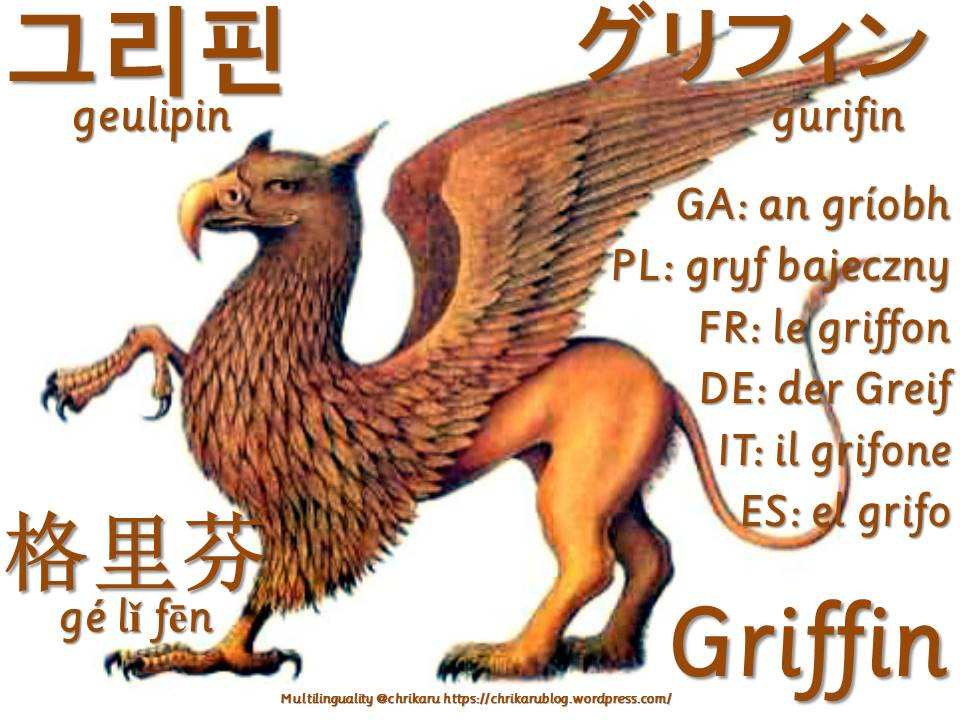 multilingual flashcards griffin