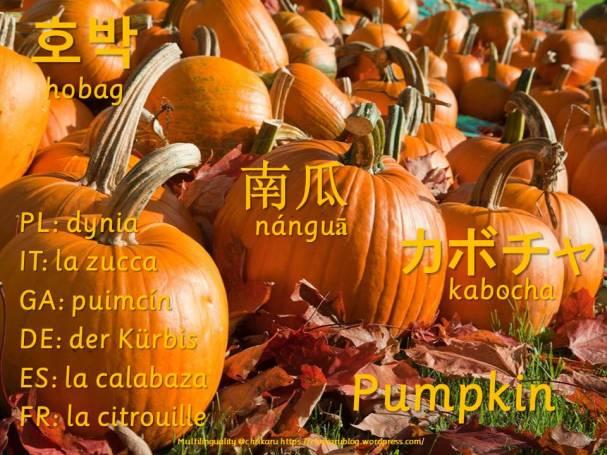 multilingual-flashcards-pumpkin