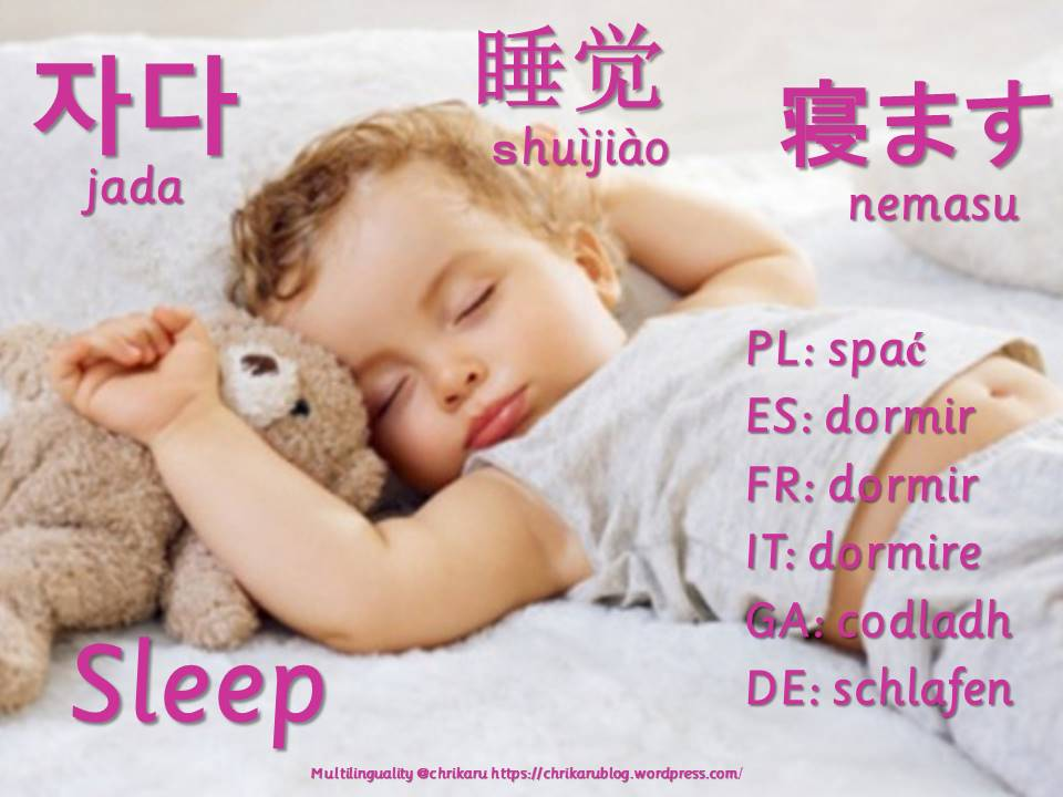 multilingual flashcards updated sleep