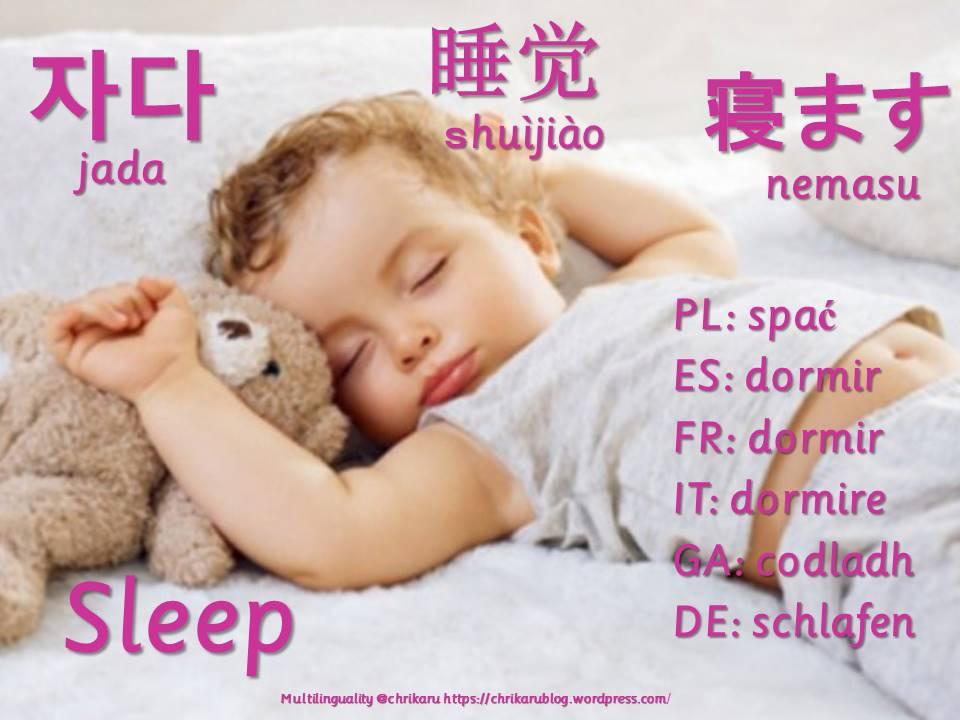 multilingual flashcards updated sleep