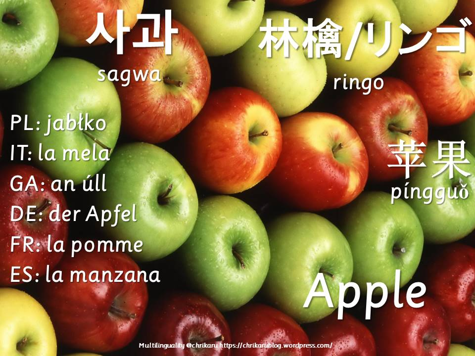 multilingual flashcards updated apple