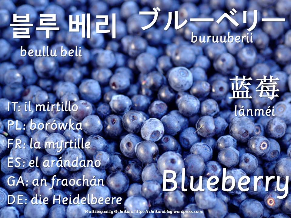 multilingual flashcards updated blueberry
