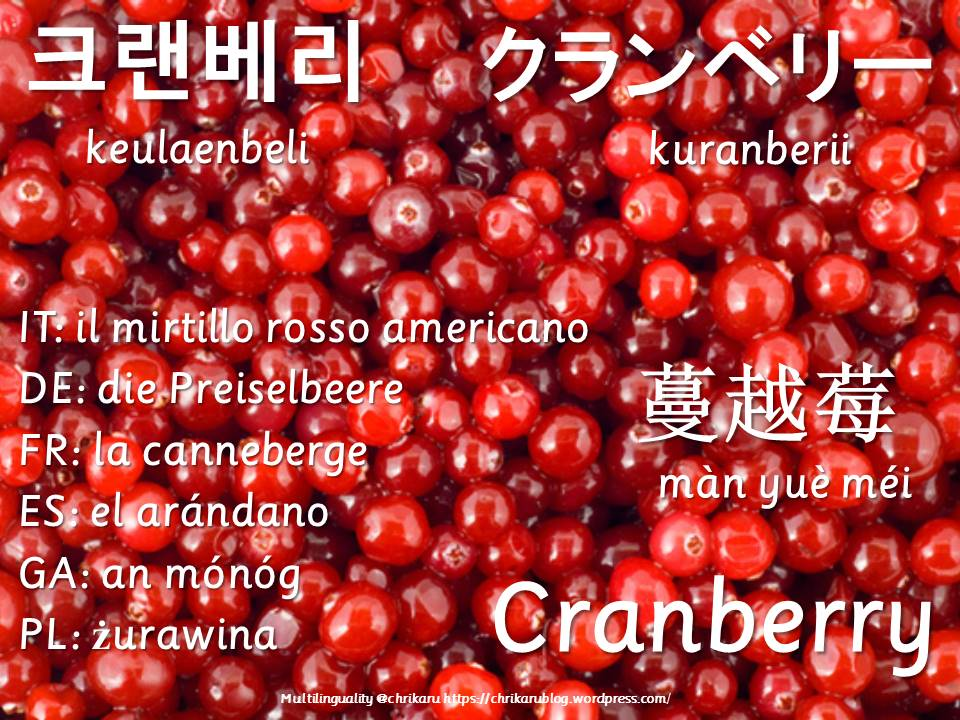 multilingual flashcards updated cranberry