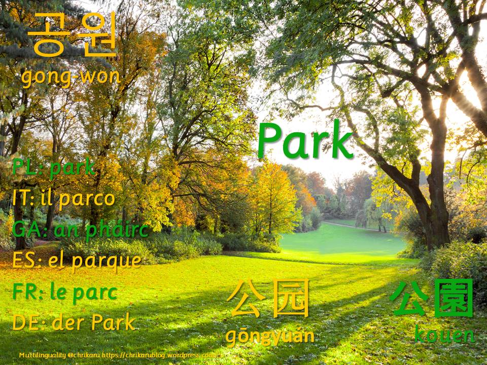 multilingual flashcards updated park