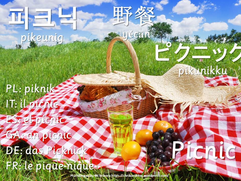 multilingual flashcards updated picnic