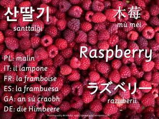 multilingual flashcards updated raspberry