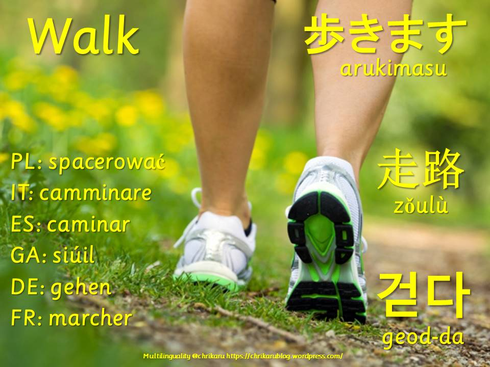 multilingual flashcards updated walk