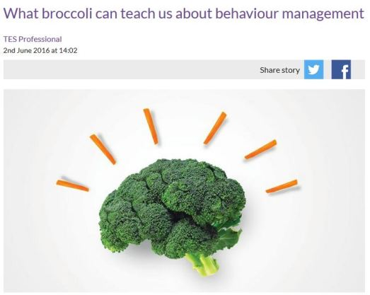 broccoli behaviour