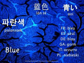 multilingual flashcards blue