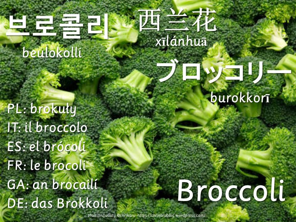 multilingual flashcards broccoli