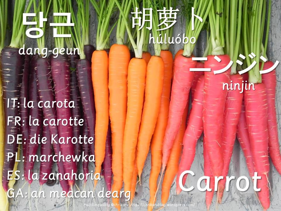 multilingual flashcards carrot