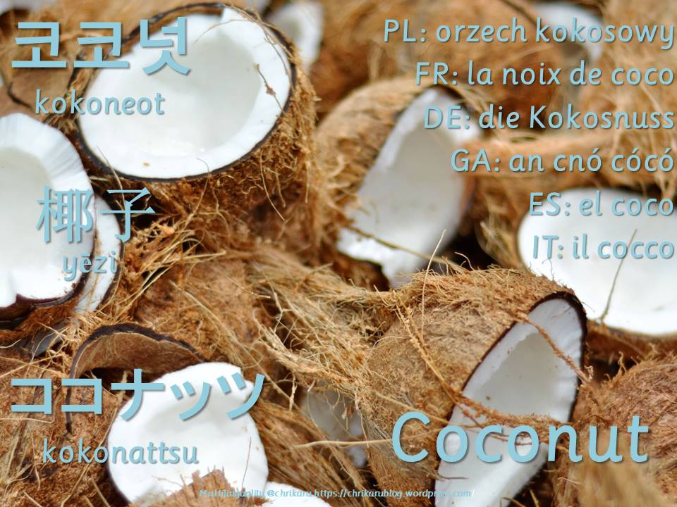 multilingual flashcards coconut