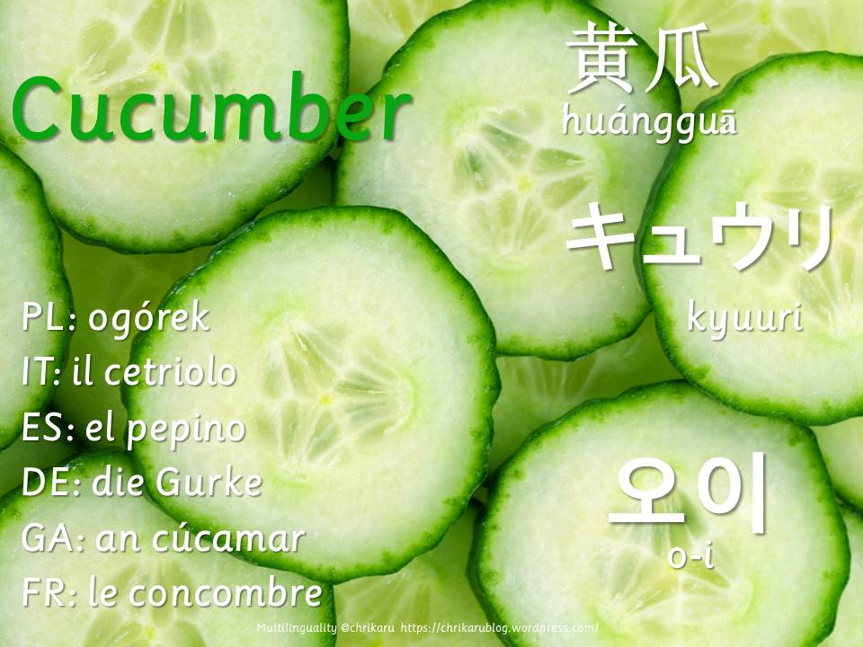 multilingual flashcards cucumber