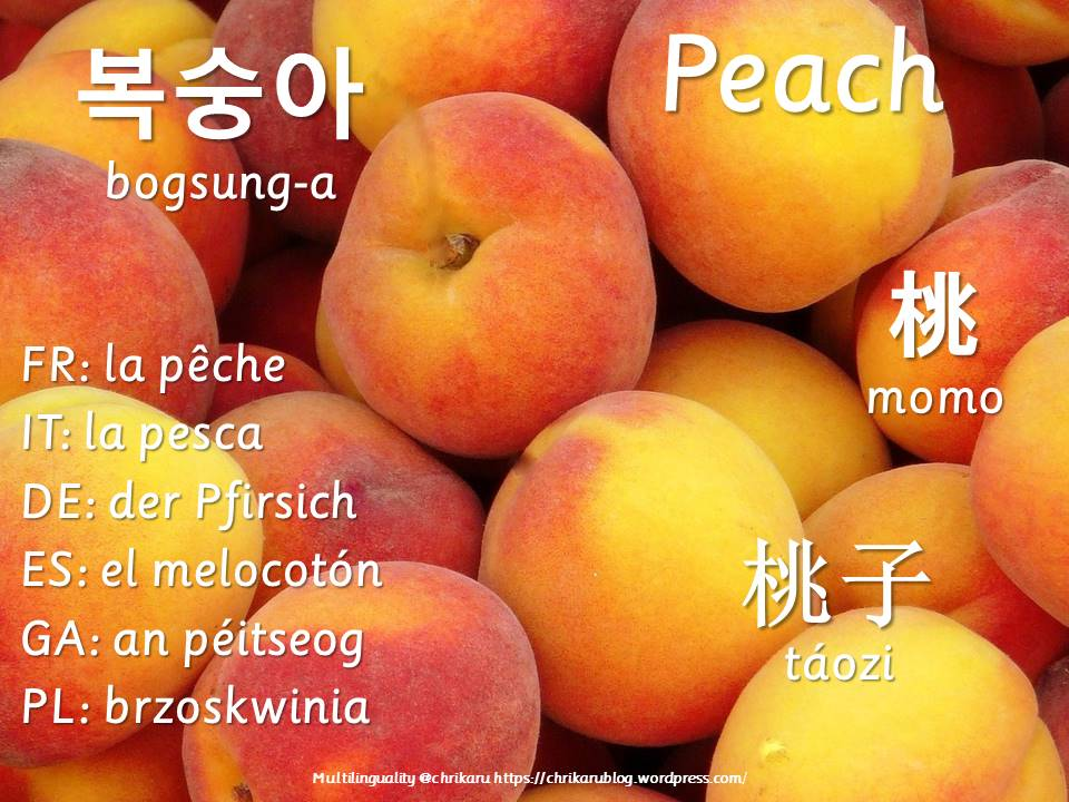 multilingual flashcards peach