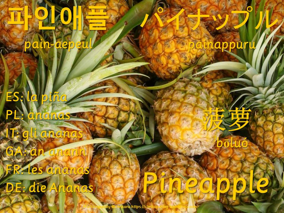 multilingual flashcards pineapple