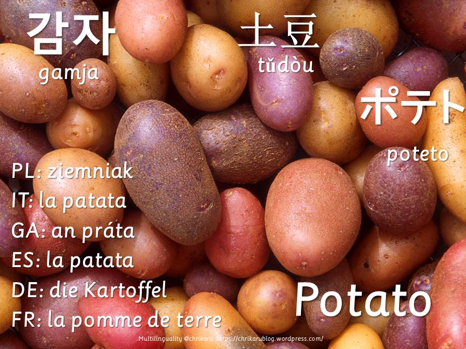multilingual flashcards potato
