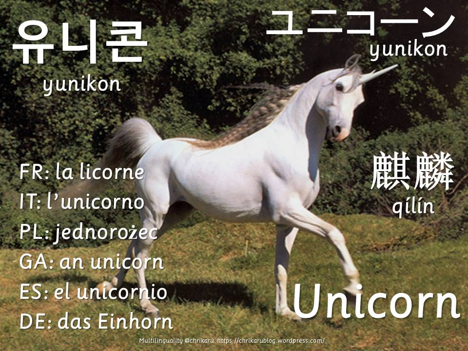 multilingual flashcards unicorn