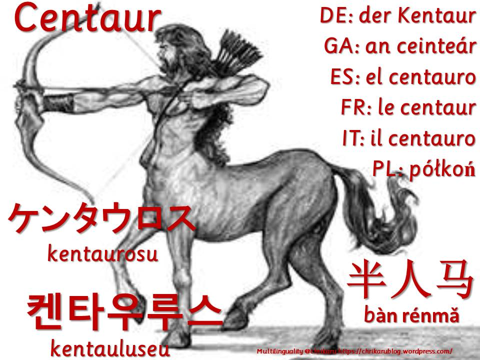 multilingual flashcards centaur