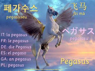 multilingual flashcards pegasus