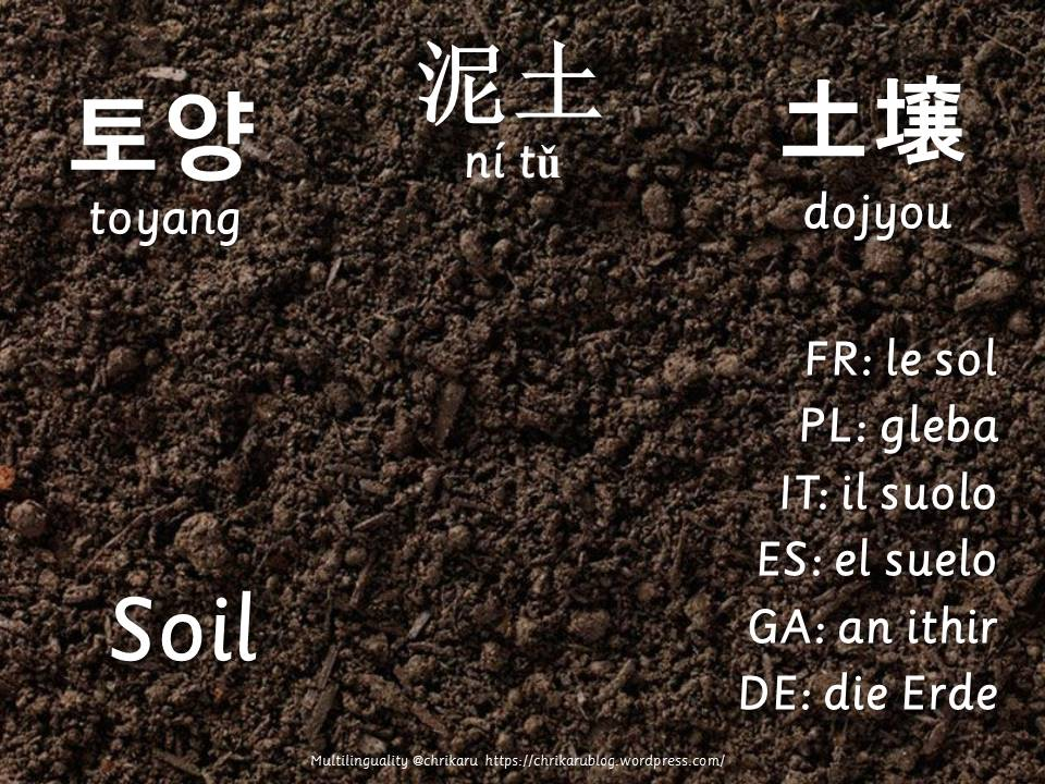 multilingual flashcards soil