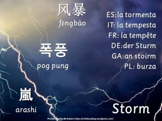 multilingual flashcards storm