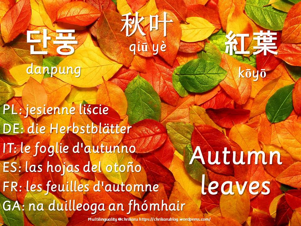 multilingual flashcards autumnleaves