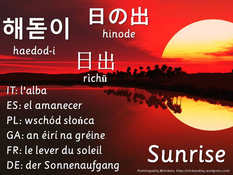 multilingual flashcards sunrise