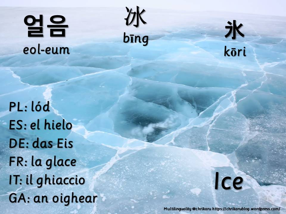 multilingual flashcards ice