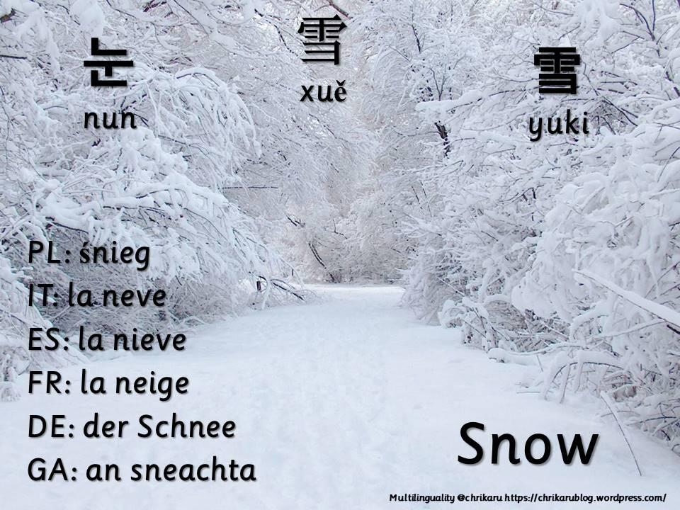 multilingual flashcards snow