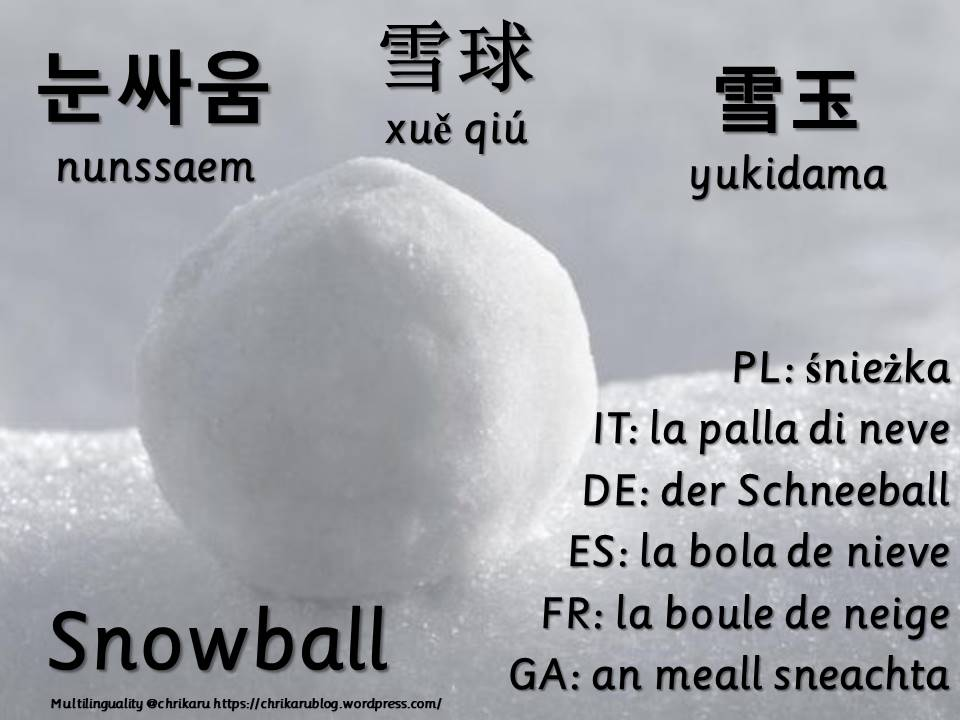 multilingual flashcards snowball