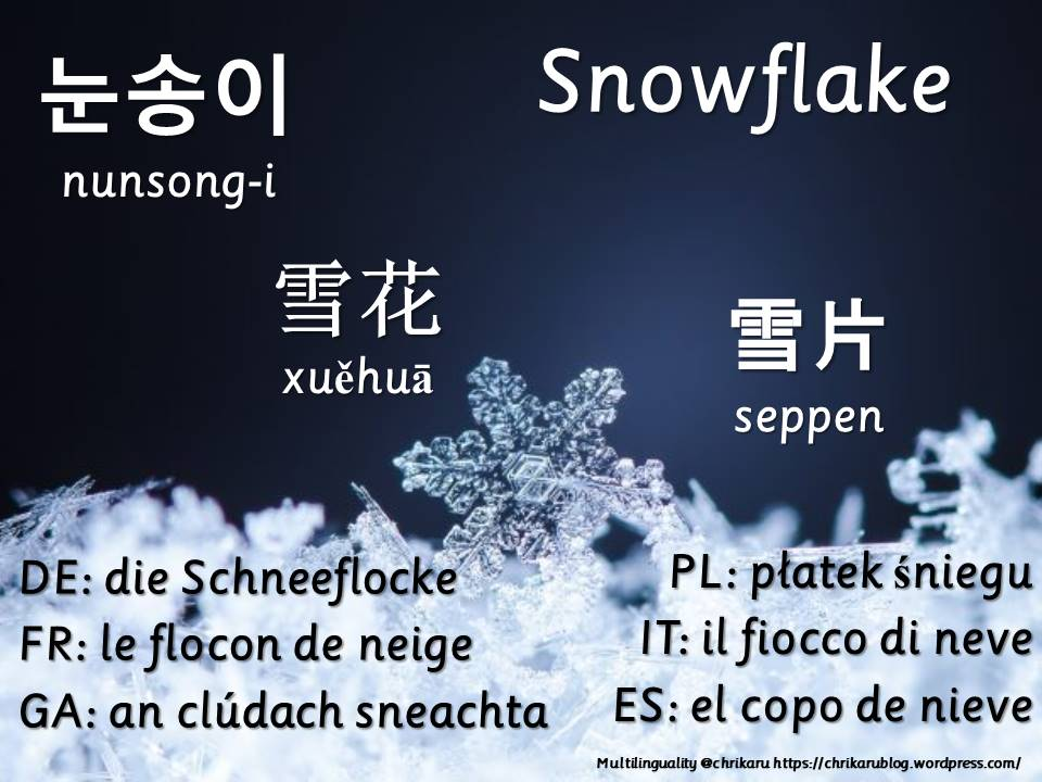 multilingual flashcards snowflake