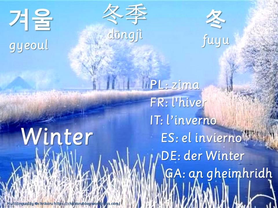 multilingual flashcards winter