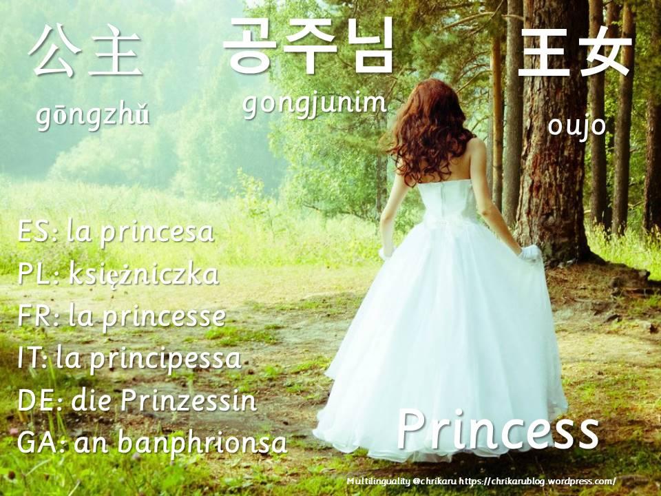 multilingual flashcards princess
