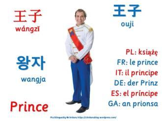 multilingual flashcards prince