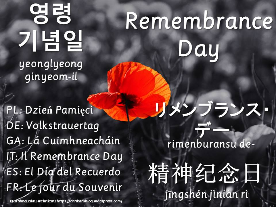 multilingual flashcards remembrance day